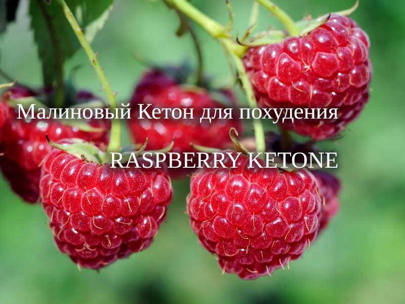таблетки eco pills raspberry
